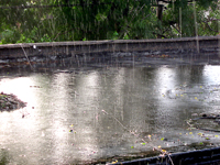 STORMWATER: Two things customers should know about the fee that starts Jan. 1, 2013