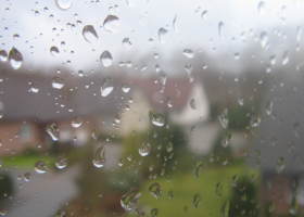 LINK: What causes that after-the-rain smell? Scientists have a theory.