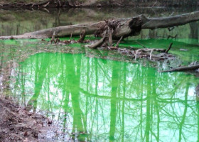 OMG! (Oh my! Green!): Eco-friendly dye helps trace sources of pollution