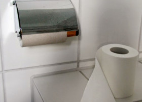 HISTORY: Thank you, Seth Wheeler, inventor of the perforated toilet-paper roll