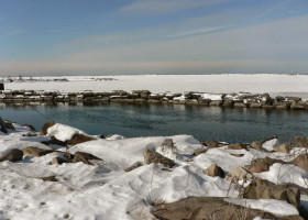 ALGAE: Does Lake Erie's freezing trend mean more algae in the summer?