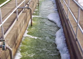 GREEN: Um yeah, even wastewater's not supposed to look like this. #StPatricksDay