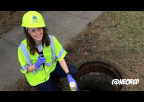 WATCH: Flush o' the Irish? Kelsey shows us green dye is for more than St. Patrick's Day.